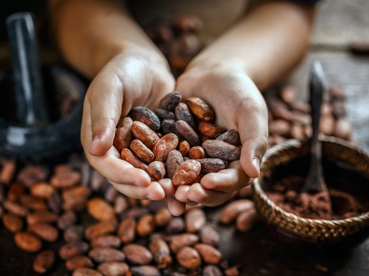 Verkaufsstopp Kakao
